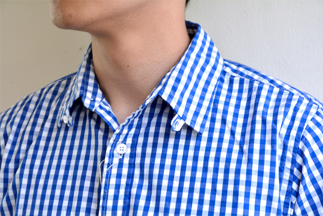 DAYS-tabcollar-gingham7