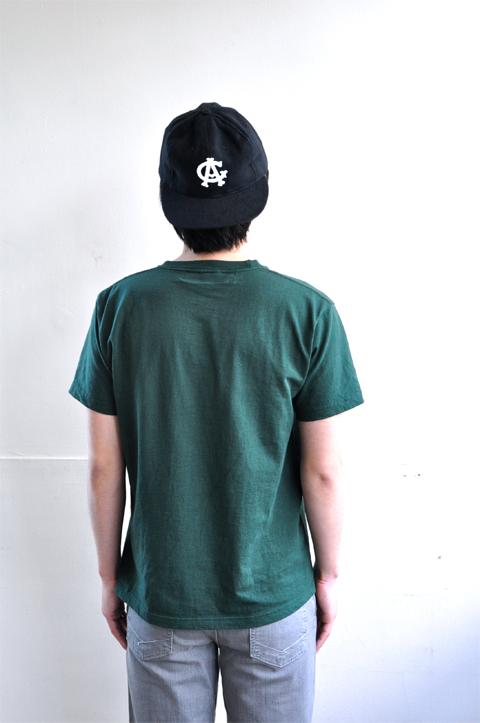 AMS-green6