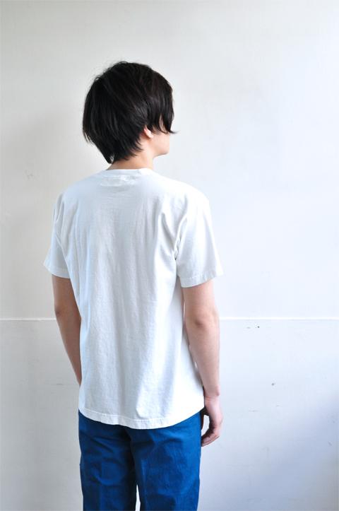 AMS-white6