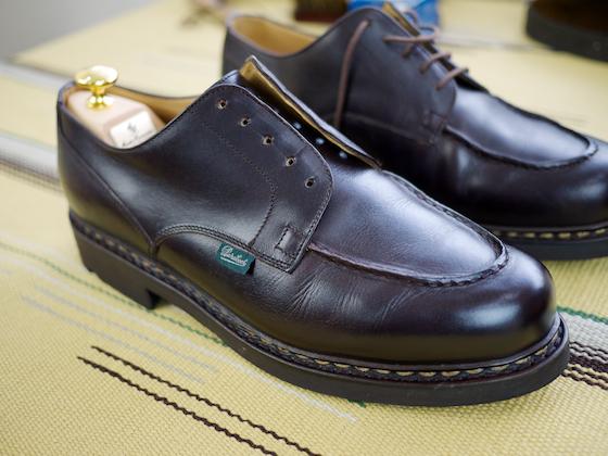 shoecarelec2
